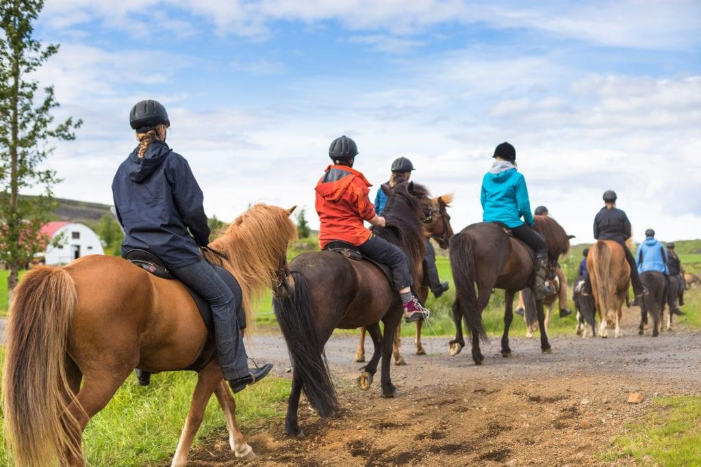 Rideleir med Venavind på Venabygdsfjellet